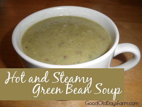 green bean soup copy