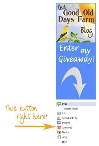 FBGiveawayButton copy