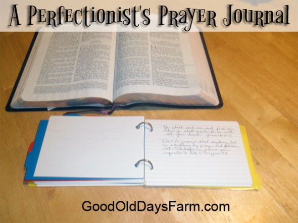 A Perfectionist's Prayer Journal
