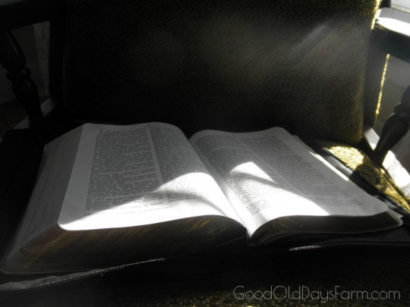Start your day in the Bible ~ GoodOldDaysFarm.com