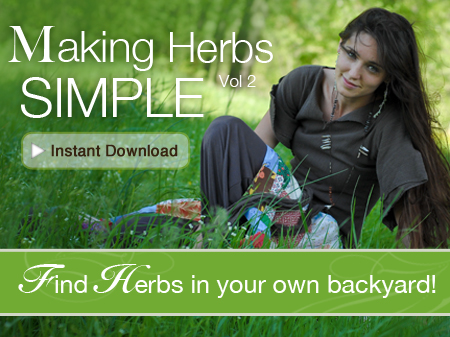 Making-Herbs-Simple-Instant-Download-2