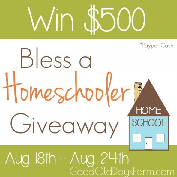 Bless A Homeschooler $500 Giveaway!