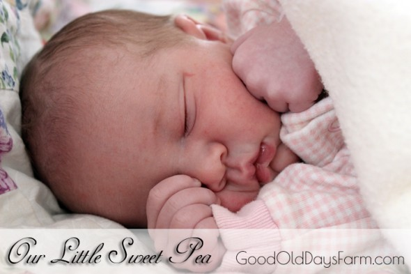 God has blessed us with a new little Sweet Pea!