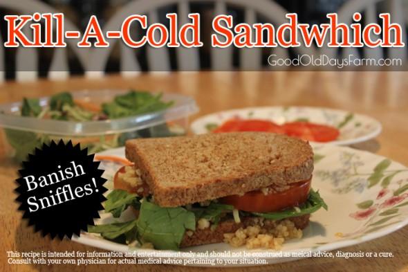 Kill-A-Cold Sandwich