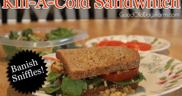 Kill-A-Cold Sandwich (The Official Recipe!)