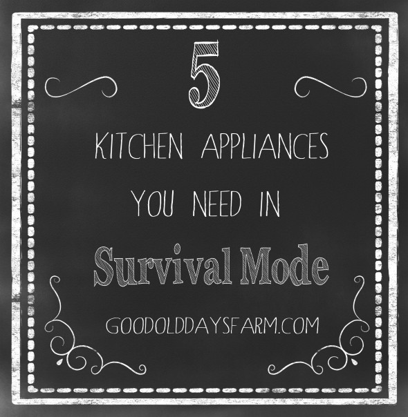 5 Kitchen Appliances You Need in Survival Mode