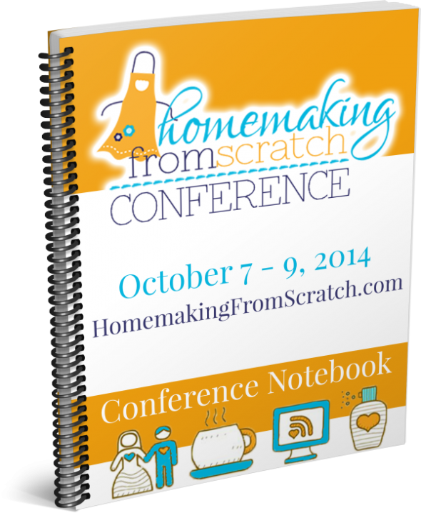 HFS-Conference-Notebook-3D-e1411803529835