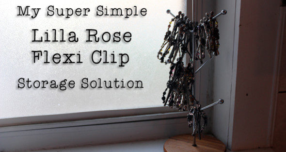 My Simple Lilla Rose Flexi Clip Storage Solution