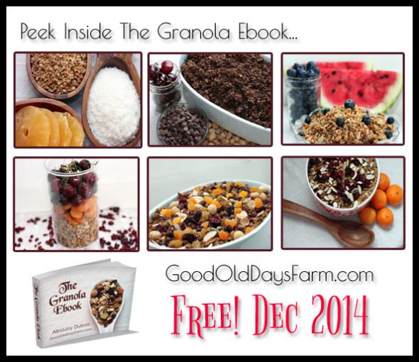Granola Ebook - allergy friendly and whole grains. FREE through Dec 2014!