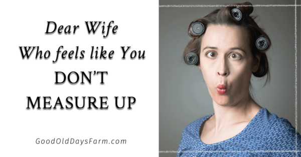 "Dear Wife Who Feels Like You Just Don't Measure Up (Or ""How To Be A Better Christian, Wife, and Person…"")"
