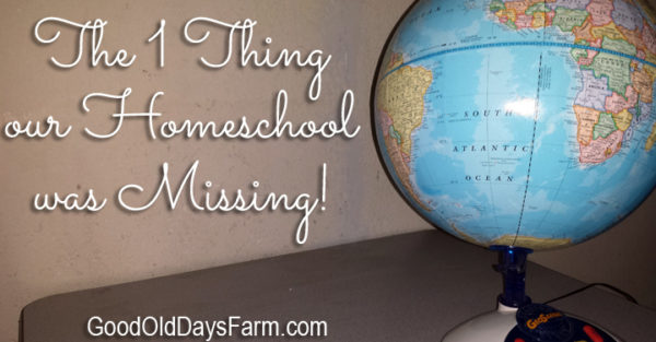 The One Thing Our Homeschool Was Missing