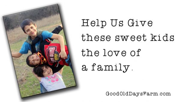 Helps Us Give These orphans the Love of a Family. How YOU can help with Orphan Hosting
