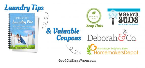 4 Moms share their Laundry Systems & tips + Really great coupons!