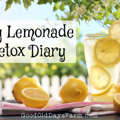 Do People Really Clean Their Intestines With Lemonade? An Honest Look