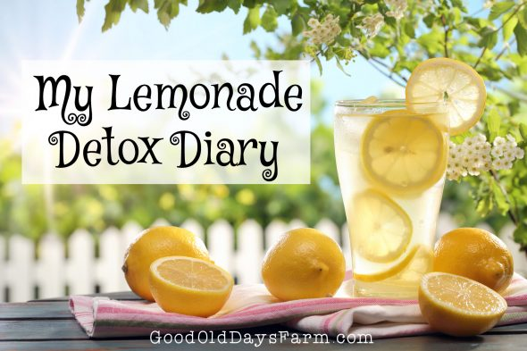 Do People Really Clean Their Intestines With Lemonade? The Lemonade Diet