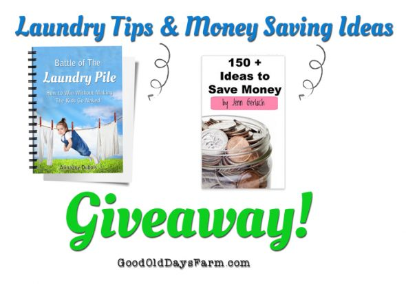 MoneySavingIdeasGiveaway