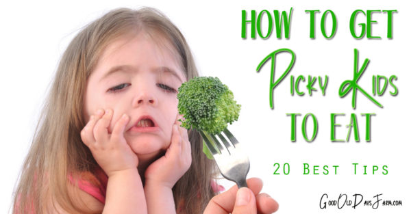 How To Get Picky Kids to Eat Healthy Food - 20 Best Tips